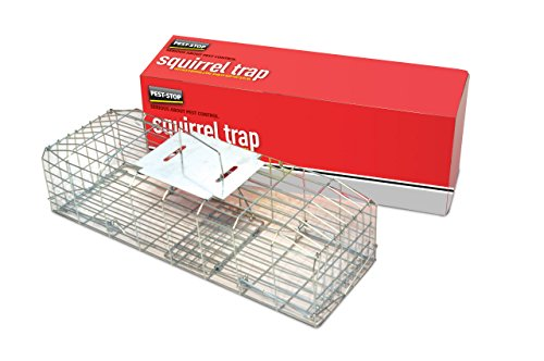 Pest-Stop Squirrel Cage Trap 24in