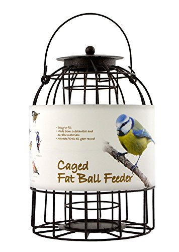 Green Jem Dome Shaped Caged Fat Ball Wild Bird Feeder, Brown Hammer Tone, 15.5x15.5x23 Cm