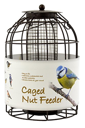 Green Jem Dome Shaped Caged Nut Wild Bird Feeder