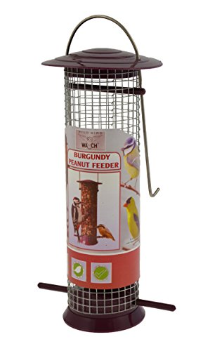 Wild Bird Watch Nut Feeder, Burgundy