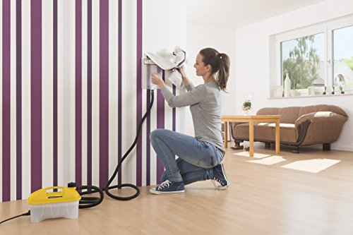 Wagner W-14 2000 Watt Steam Wallpaper Stripper