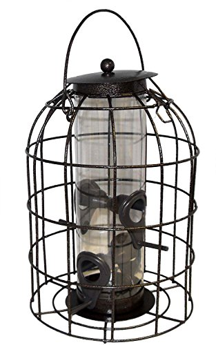 Green Jem Dome Shaped Caged Seed Wild Bird Feeder