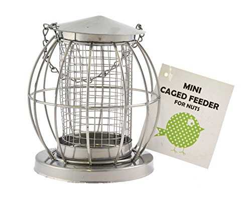 Green Jem Mini Lantern Wild Bird Feeder
