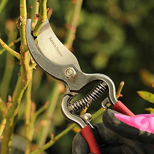 Kent And Stowe 70100476 Traditional Bypass Secateurs