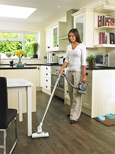 Black & Decker Dustbuster® Flexi Hand Vac & Floor Extension Kit