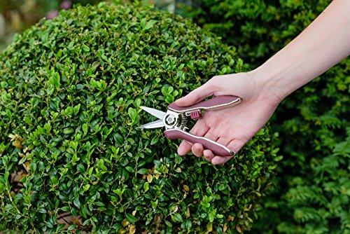 Kent & Stowe Garden Life Pruning Snips