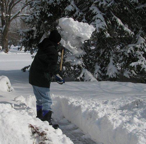 Bulldog Snow Shovel