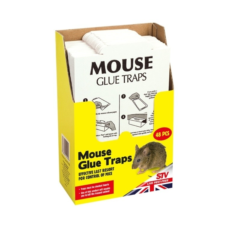 Mouse Glue Trap x 3